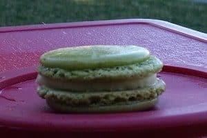 macaron shells flat