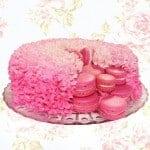 macaron surprise cake