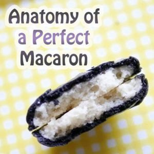 Anatomy of a Perfect Macaron