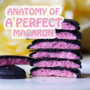 Anatomy of a Perfect Macaron