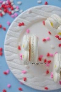 white-bunny-macarons