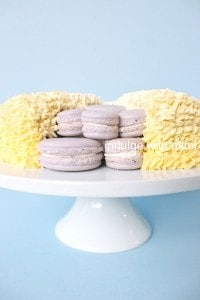 macaron-inside-cake