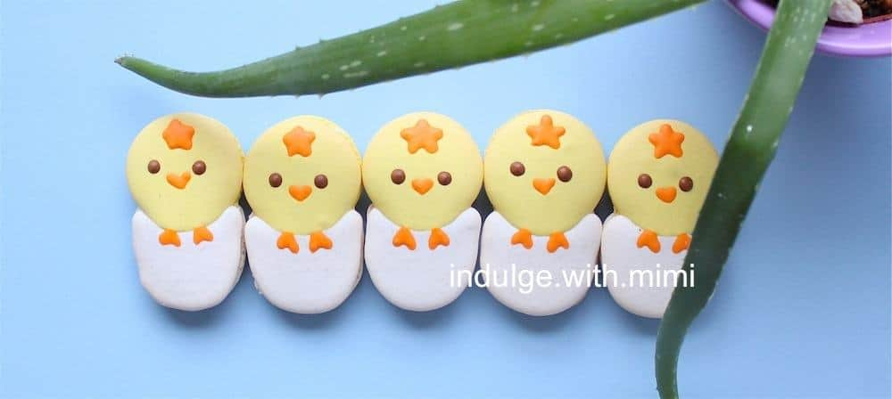 IMG_1909-easter-chickee-macarons