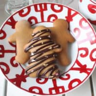 Golden Chocolate Gingerbread Cookies & My Winter Holiday