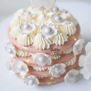 Big Cherry Blossom Macaron Cake with Big Macaron Shell Template