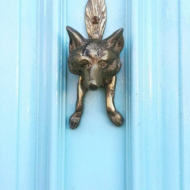 Have a Foxy day! a Foxy knocker against one ofhellip
