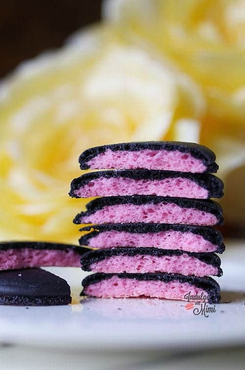 Gender Reveal Surprise Macarons Pacifier Macaron Template
