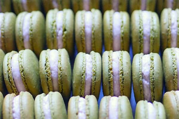Close up of rows of strawberry matcha macarons.
