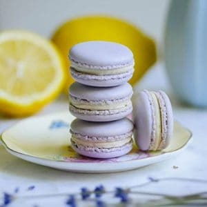 Dainty Lavender Lemon Macarons