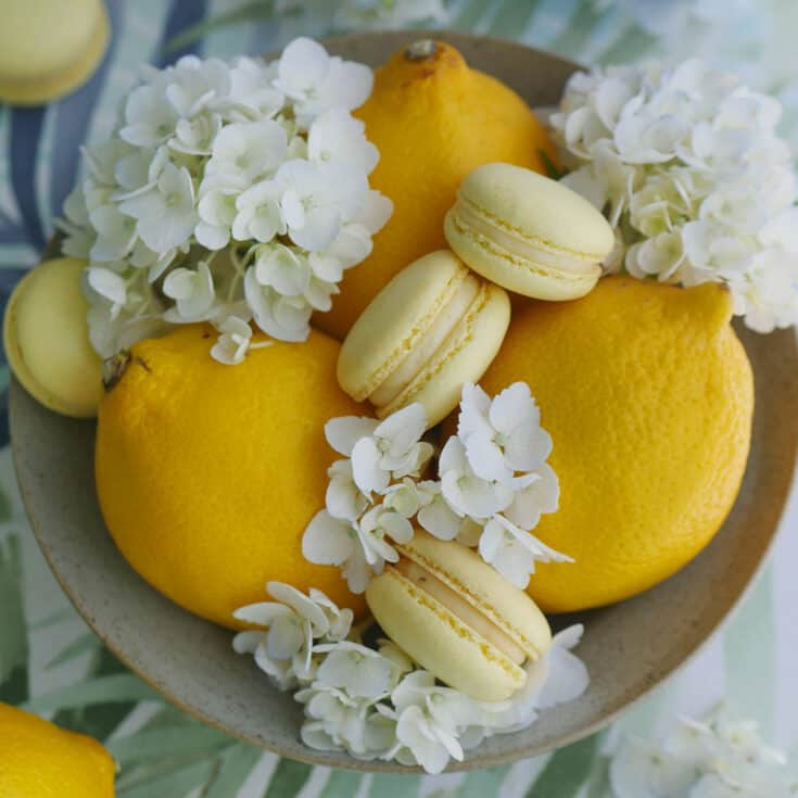 Lemon curd macarons on a plate with some fresh lemons and flowers.
