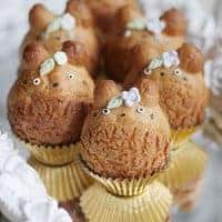 Cute Totoro Cream Puffs with Earl Grey Cream