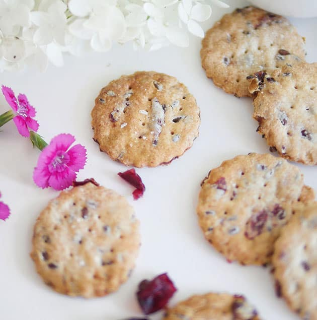 Close up of sourdough discard crackers with cranberry shown with some flowers in the back.