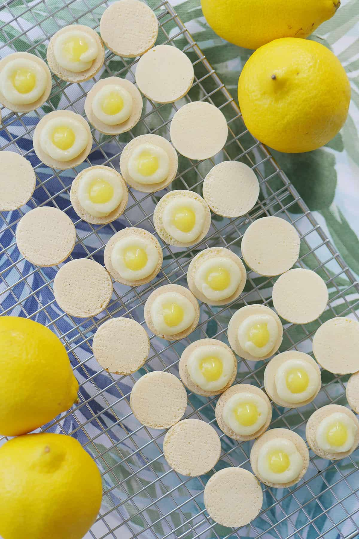 Macaron shells on a cooling rack showing a ring of buttercream with a dollop of lemon curd in the center.