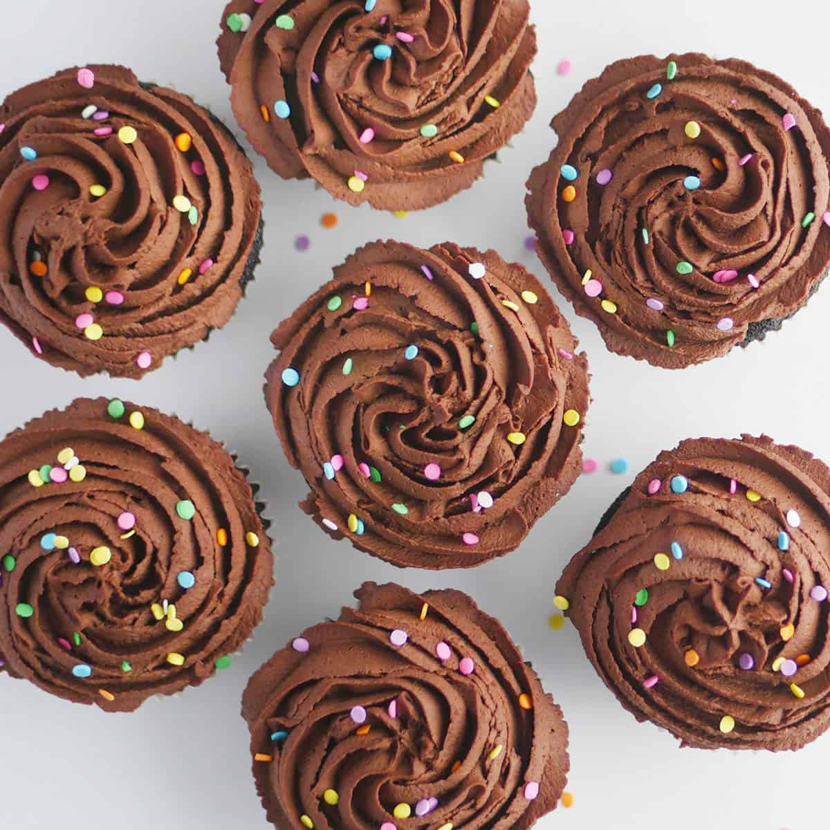 Cupcakes topped with chocolate whipped cream piped into swirls viewed from top down.
